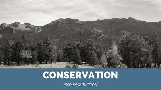 Conservation & Inspiration