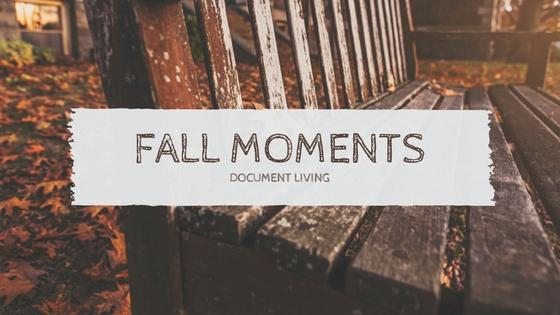Fall-moments.jpg