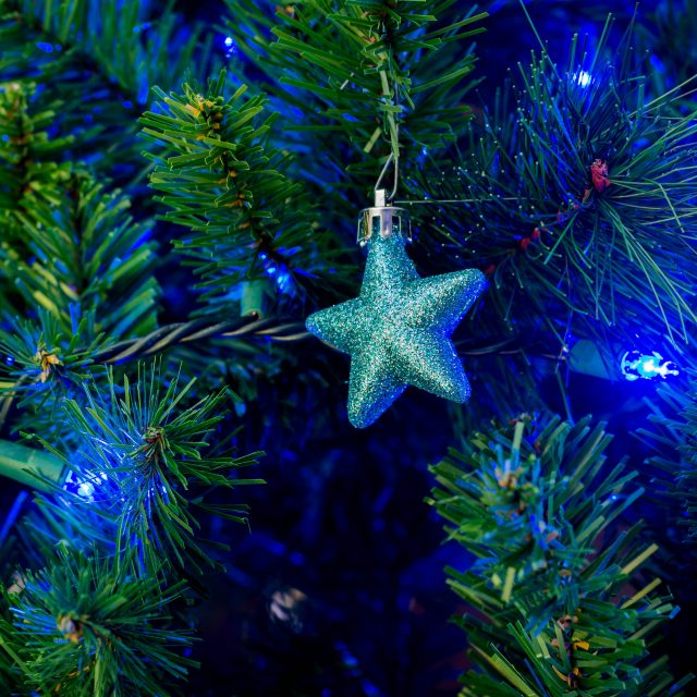 christmas ornament for gift ideas